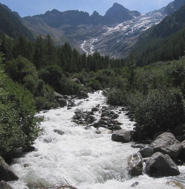 Le glacier du Trient IMG_5482